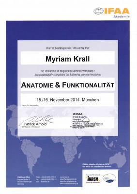 Anatomie & Funktionalität