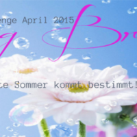 Spring Break Challenge April 2015